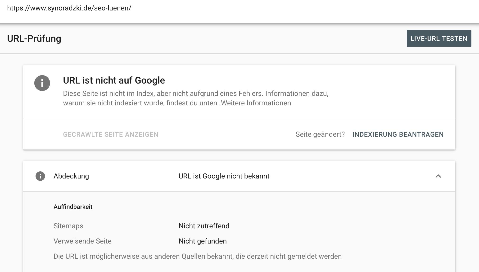 SEO Lünen - Google Indexierung